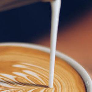 Finch Coffee Co